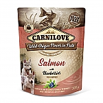 CARNILOVE INTO THE WILD SALMON WITH BLUEBERRIES FOR PUPPIES (300 GRAM)