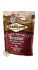 CARNILOVE INTO THE WILD REINDEER FOR ADULT CATS ~ ENERGY & OUTDOOR (400 GRAM)